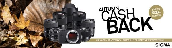 Banner - SIGMA Autumn Cashback - 1500x417px - NO